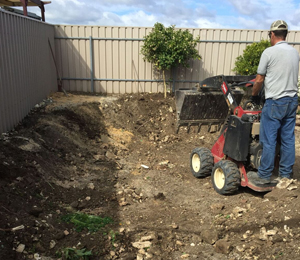 Turf Supplier Port Adelaide, Landscaping Glenelg, Gardening Norwood